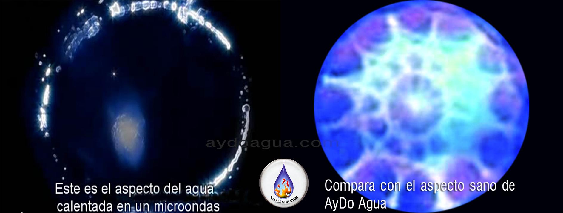 calentar-agua –microondas-aydoagua.com