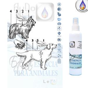Eco pipeta bio esencia perros gatos mascotas aydoagua