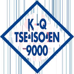ISO TSE EN 9000