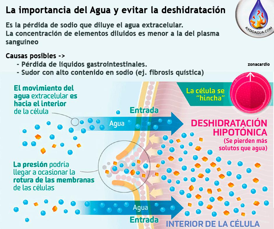 Tipos de Deshidratación de agua. aydoagua