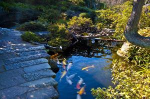 estanque jardin-puente-aydoagua